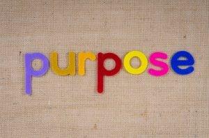 el propósito en una empresa